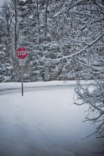 46:365 STOP winter now!