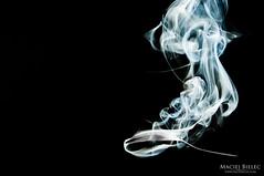See whatever you want (Maciek Bielec) Tags: wallpaper abstract black purple smoke lowkey strobe tapeta dym spoom strobist strobing łyżka ³y¿ka