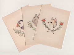 Card Set (Sarah McNeil) Tags: plants bird animal set illustration painting drawing branches chinchilla card puffin item quoll sarahmcneil
