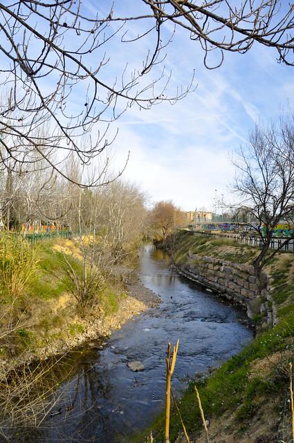 Río Huerva 6