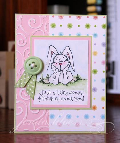 Bunny Wonders
