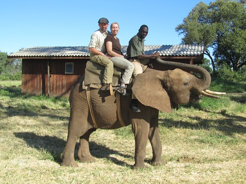 Riding an Elephant at Victoria Falls Private Game Reserve