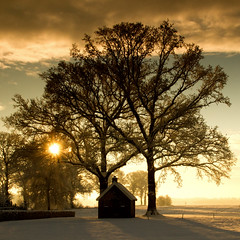 Winter scene * explore * (dewollewei) Tags: winter image getty gettyimages gettyimage supershot sibculo photographymypassion doublyniceshot