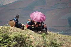 IMG_0850 (rasemarie) Tags: travel canon asia southeastasia vietnam ricefields sapa blackthai ethnicminorities 450d