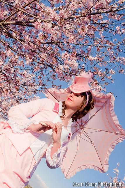 Sakura2011_1148