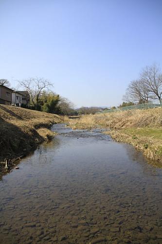 八王子の川口川