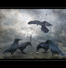 Lost Time (h.koppdelaney) Tags: life wallpaper man black art beautiful birds digital photoshop lost greek ancient allen power maya symbol time god ominous magic fear watch gothic picture large philosophy running elderly mind edgar surprise flies demon mystical alfred crow underworld metaphor raven ravages zeitgeist limit poe angst psyche passes zeit symbolism psychology advantage analysis archetype raben hugin munin chronos wotan hitchkock drngt koppdelaney