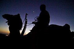 desserted moon (harpography.com) Tags: sunset moon moonlight even nomad harp came jaiselmer harpography rajistathan