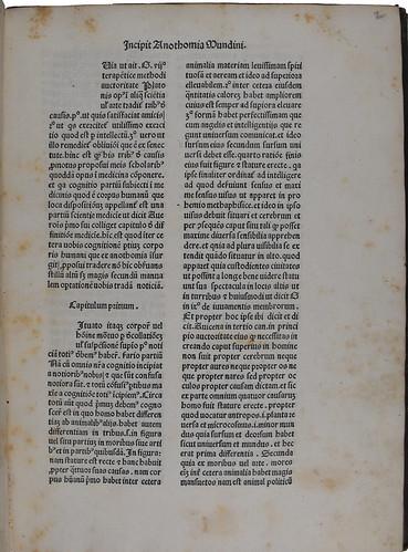 Incipit of Mundinus: Anatomia