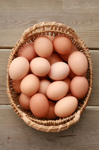 farm fresh brown eggs