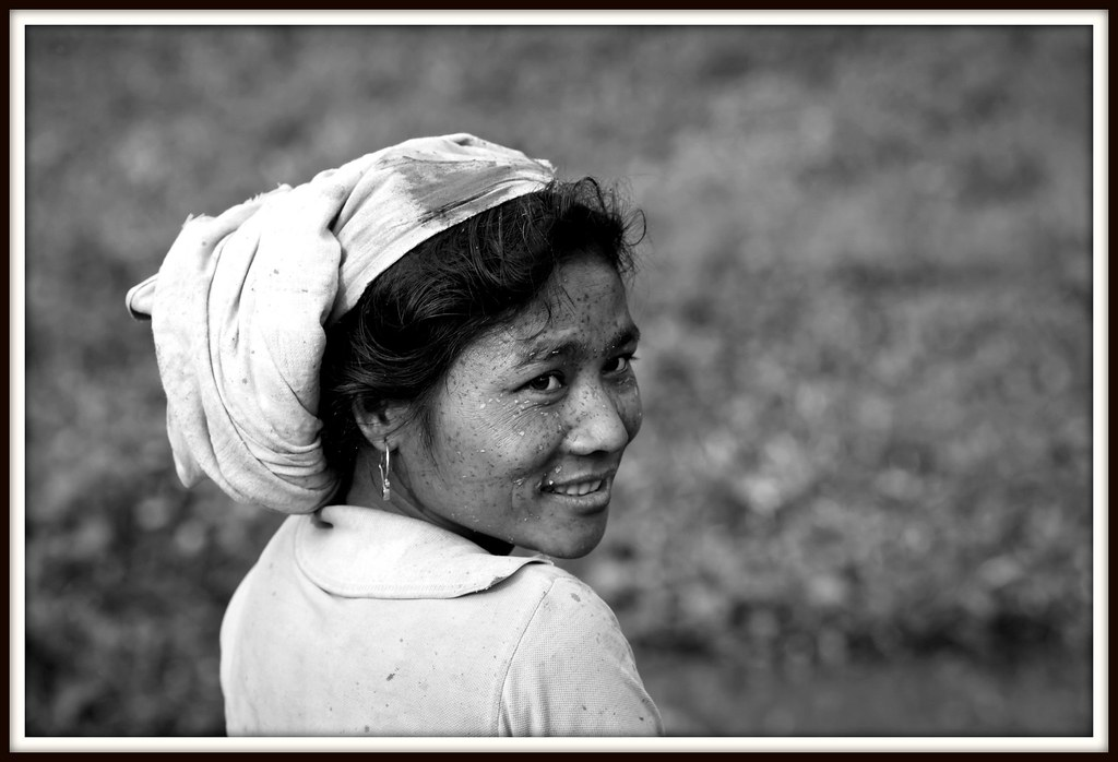 the worlds best photos of kitchen and majuli flickr