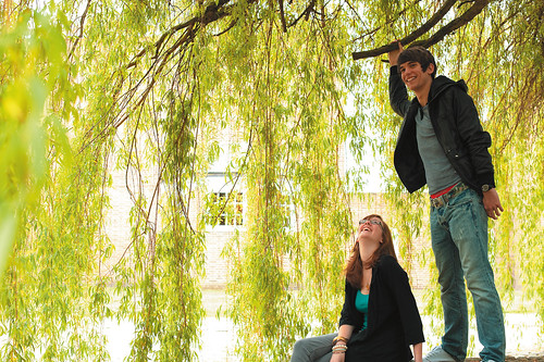 Undergraduate students chatting under a tree