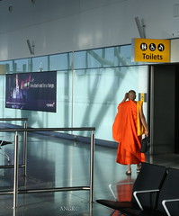 No Exemptions (NatashaRuz) Tags: london airport heathrow buddha buddhist monk britishairways bodies function humans equal callofnature
