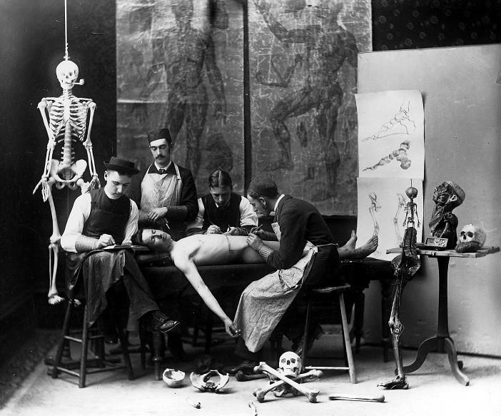 Cours d'anatomie, Notman & Son