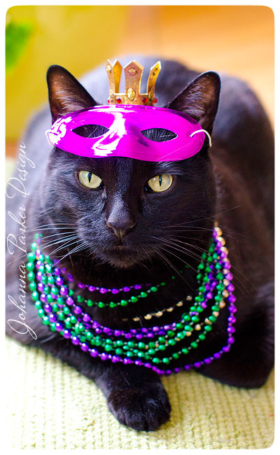Mardi-Gras-Jack-the-poser