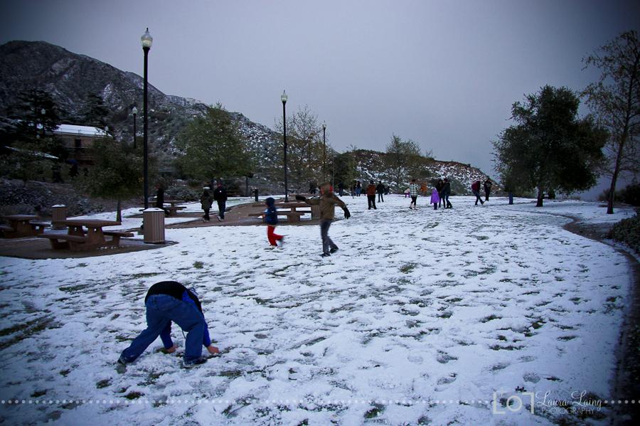 snow2011-8
