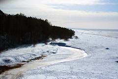 IMG_9562 (Tornny) Tags: sea sky beach pine forest canon spring sand dunes dune bluesky natura latvia riga balticstates thebalticsea латвия whitedune canon450d baltakapa белаядюна