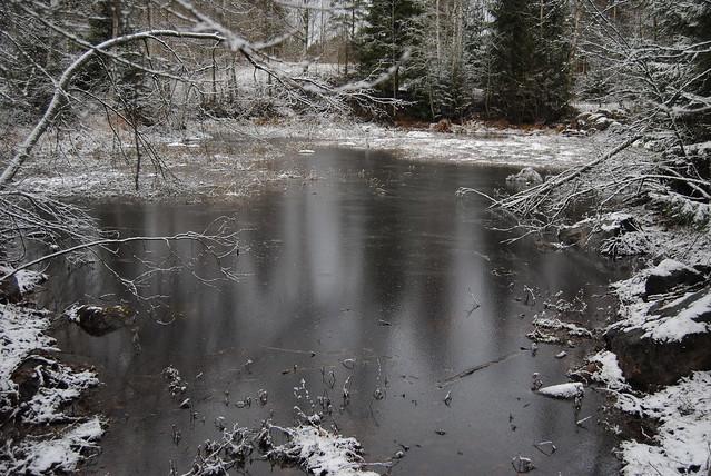 20110126 - winter 006