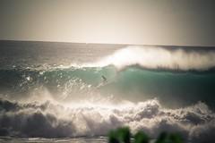 North Shore Surfing (thestevenalan) Tags: hawaii surf oahu surfing northshore 20 pipeline bigwave hugewave epicsurf
