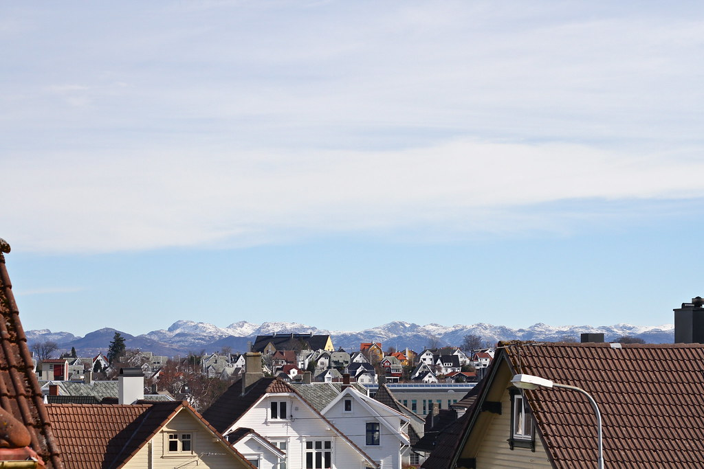 My Street: 16.03.11