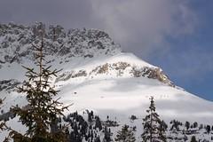 Wochy 2011 (mlask) Tags: italy alps alpy dolomites bolzano bozen carezza lagodicarezza karersee wochy dolomity welschnofen novalevante