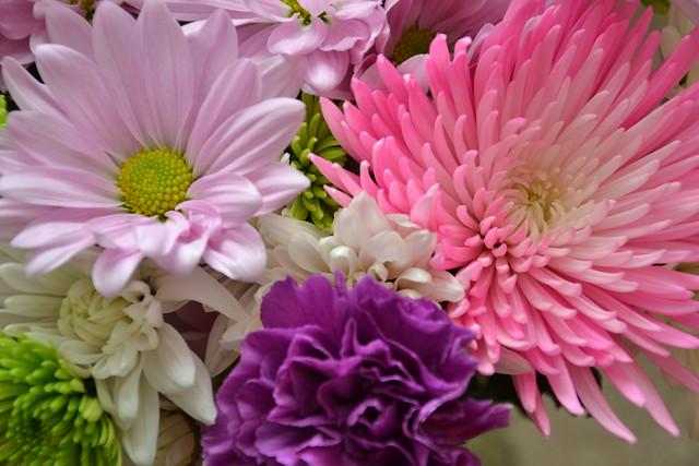 Flowers SOOC4