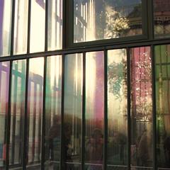 Botanical Garden ~ Paris ~ MjYj (MjYj) Tags: sunset paris botanicgarden img9800 mjyj mjyj