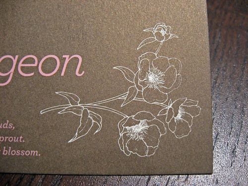 Bourgeon Offset Business Cards