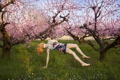 Virginia (Vincenzo Pioggia) Tags: primavera virginia estate rosa fiori sole pesca prato capelli pesco caduta sospesa