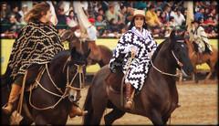Bem de poncho e cavalo... (Eduardo Amorim) Tags: brazil horses horse woman southamerica girl brasil criollo caballo cheval caballos donna mujer femme mulher guria cavalos pelotas menina pferde fille poncho cavalli cavallo cavalo gauchos pferd riograndedosul mdchen pampa hest pala ragazza hevonen campanha brsil chevaux gaucho gacha  amricadosul gaucha hst muchacha ragazze gacho signore  amriquedusud  gachos gachas  sudamrica signora gauchas suramrica amricadelsur  sdamerika crioulo caballoscriollos criollos  costadoce americadelsud  crioulos cavalocrioulo americameridionale caballocriollo cavaloscrioulos iayayam yamaiay