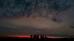 Htc one m8x (teodoraeror) Tags: mobilephoto sky sunset colors purple orange tree sun htcone novisad serbia vojvodina
