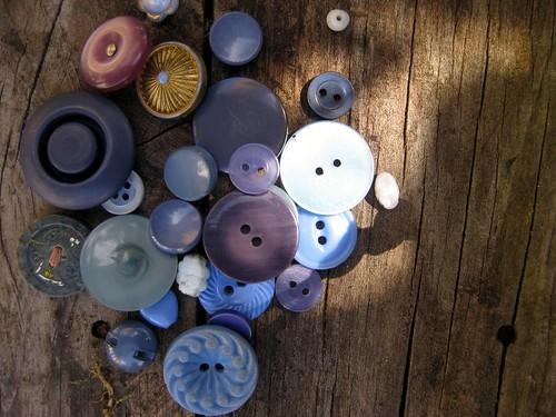 tasmanian buttons