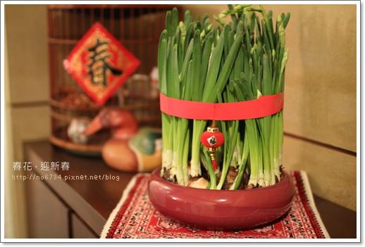 20110129_ChineseNewYear_0039 f