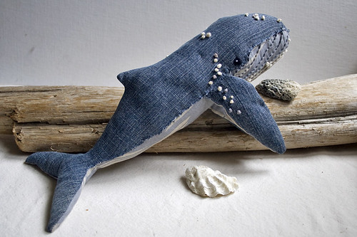 humpback whale no.7
