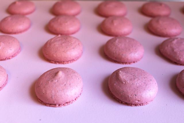 PinkMacarons01