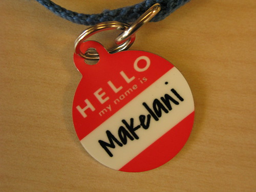 Hello My Name is Makelani