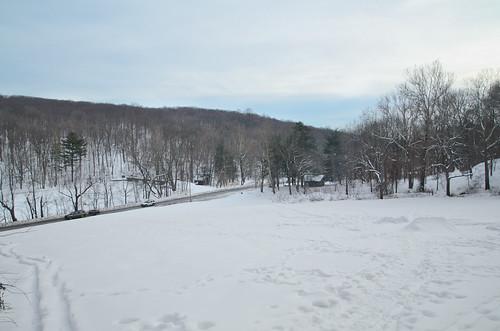 Elmdale Trail, Winter [3/3]