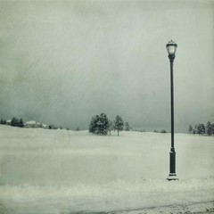 field light (jssteak) Tags: winter snow cold canon square colorado lamppost golfcourse freshsnow texturesquared t1i