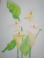 calla Lilies water color on canvas (CreationsbyGena) Tags: original flower art watercolor painting callalily
