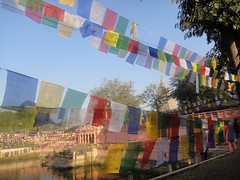 Prayer Flags - Wind Horse