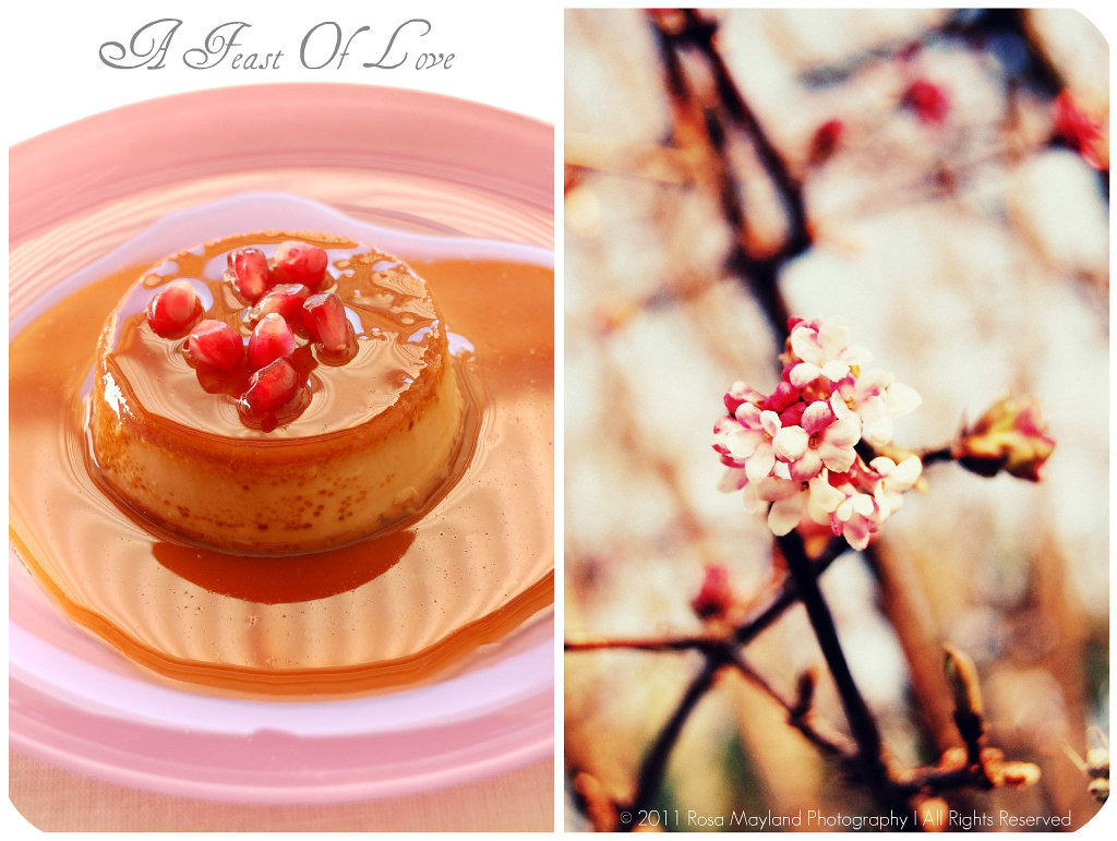 Tea Flans Picnik collage 2 bis