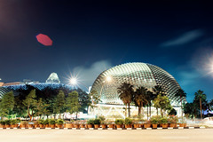 The Durian (Jon Siegel) Tags: longexposure architecture night lights nikon singapore alien esplanade durian 20mm nikkor landed f28 mothership nikkor20mmf28 d700