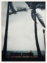 Hawaii_iPhone - 450