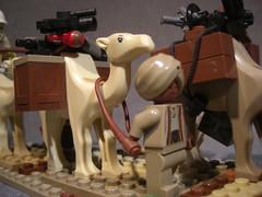 Johnny Thunder's Camel Caravan (Tervlon) Tags: desert lego egypt adventure camel johnny quest thunder pharoah pharoahs adventurers
