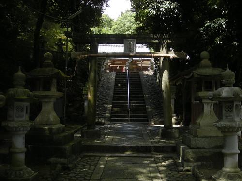�A鳥居(木)
