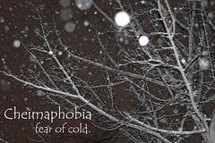 cheimaphobia (kayloniiidork) Tags: blackandwhite snow branches snowybranches cheimaphobia fearofcold