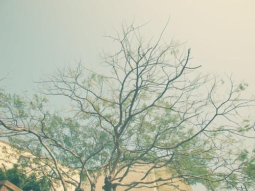 转:用照片回憶我的攝影路程 - 安东尼 - 爱生活 爱摄影