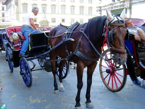 Firenze_DSC02872
