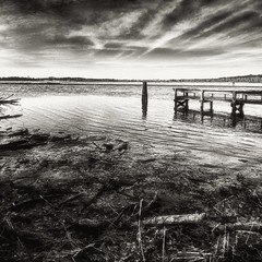 Jug Bay (Baab1) Tags: mygearandme maryland southernmaryland blackandwhite jugbay marylandparks marylandstateparks patuxentriver marylandwetlands nikon d300 1116tokina rivers fishingholes clouds niksoftware aperture