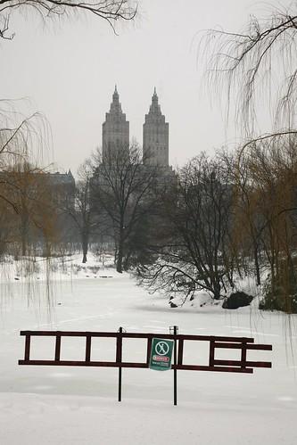 park nyc newyorkcity winter snow ny newyork building centralpark hiver 5d canon5d neige sanremo skycraper sanremobuilding